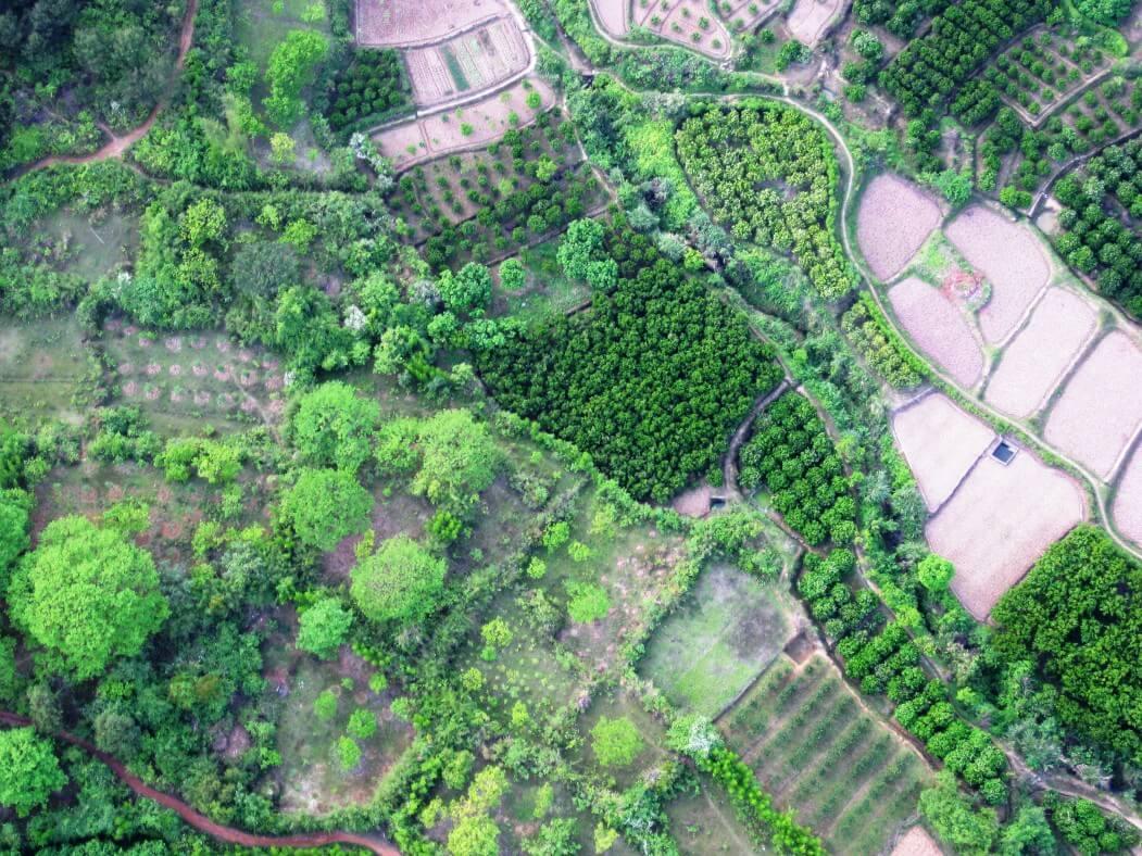2009-03 April China 164