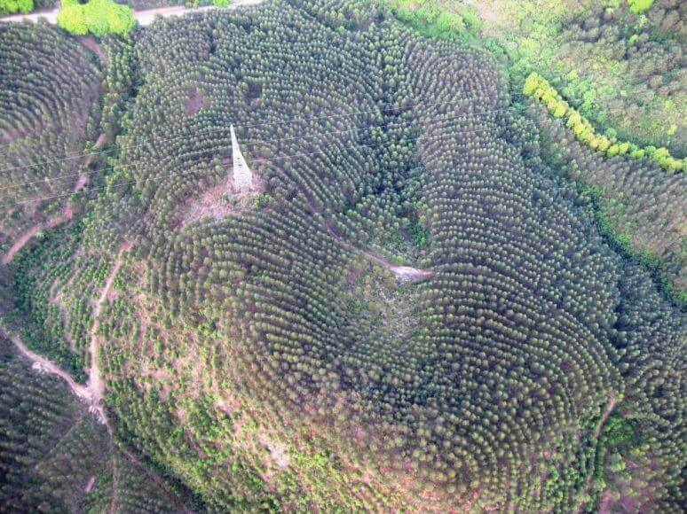2009-03 April China 167